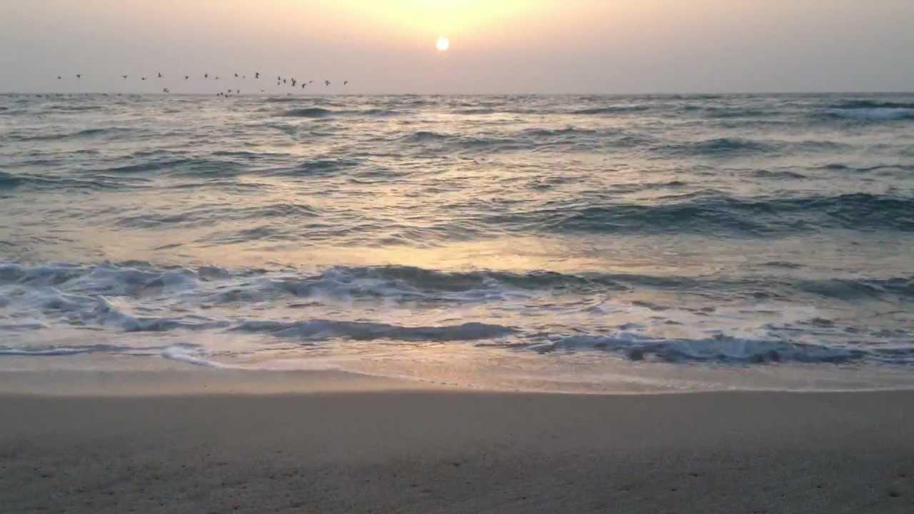 شاطئ نصف القمر... مكان الترفيه للكبار والصغار في الخبر ...