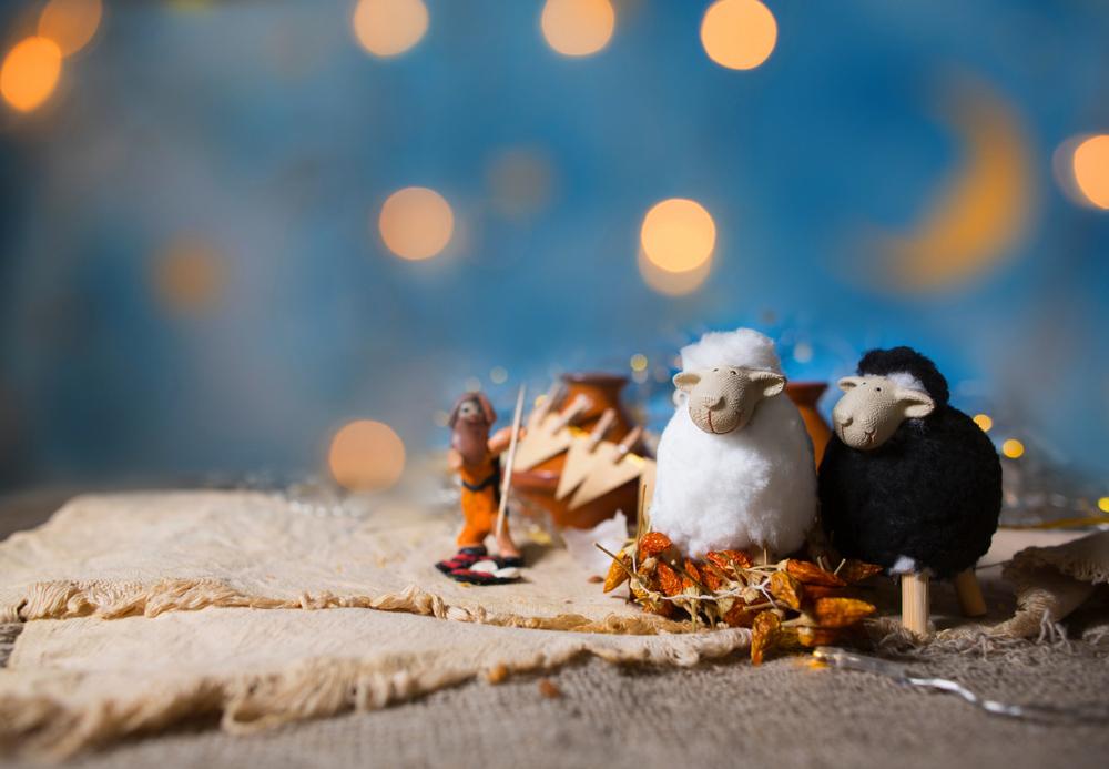 احتفالات عيد الأضحى حول العالم