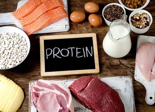 معلومات وتفاصيل مهمة عن رجيم البروتين تجدينها في الموضوع التالي