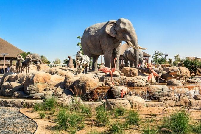 إكتشفي مع أنوثة في الألبوم التالي أشهر حدائق الحيوانات في دبي