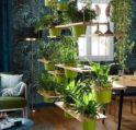 أفكار لترتيب النباتات في المنزل - أنوثة