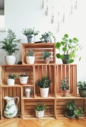إستفيدي من الصناديق الخشبية عبر تثبيتها بطريقة ملفتة، ومن ثمّ توزيع مجموعة من النباتات بأنواعها المختلفة عليها تماماً كما ترين في الصورة.