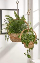 <strong></strong>إختاري سلّتين بنفس الموديل وحجمين مختلفين ثمّ علّقيهما في السقف، وإستخدميهما لترتيب نباتاتك المميزة.