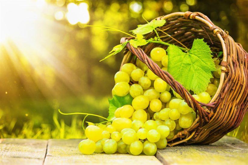 تفسير حلم العنب الأخضر – أنوثة
