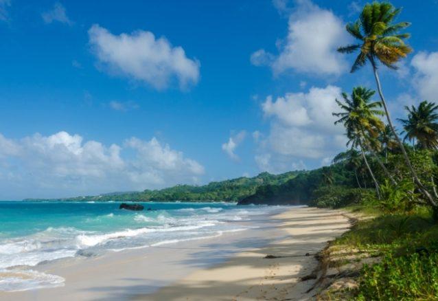 إكتشفي روعة الشواطئ وسحرها في خليج سامانا!