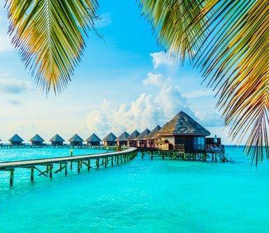 جزر المالديف أين تقع - أنوثة