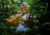 حديقة الحياة البرية... من المواقع المثالية لرحلة سياحية عائلية.