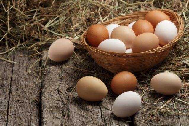 تفسير حلم جمع البيض - أنوثة
