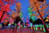 إستمتعي بأجواء الشهر الفضيل الرائعة أثناء زيارتك لمدينة الأضواء!