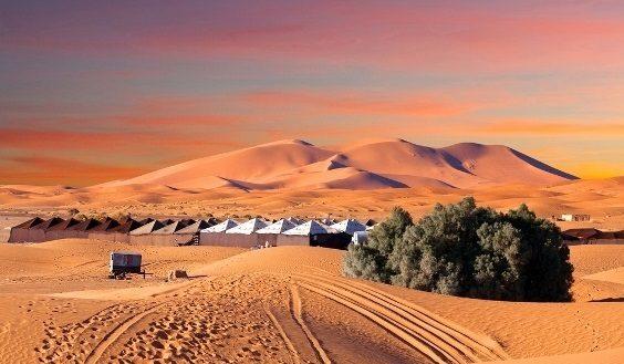 صحراء المغرب... عنوانك لرحلة سياحية إستثنائية!