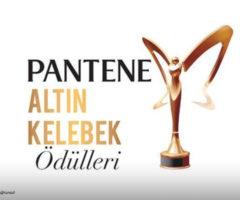 كيف كانت إطلالات النجمات التركيات في حفل جائزة الفراشة الذهبية؟
